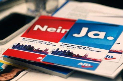 Abstimmungskarten beim Bundesparteitag der AfD in Köln. PHOTO: Ina Fassbender/AFP