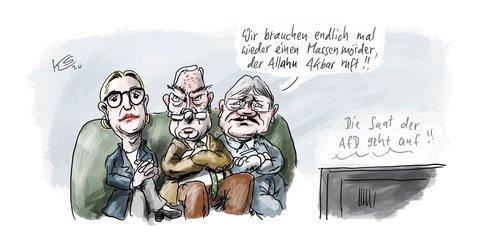 Die AfD-Spitze nach Hanau