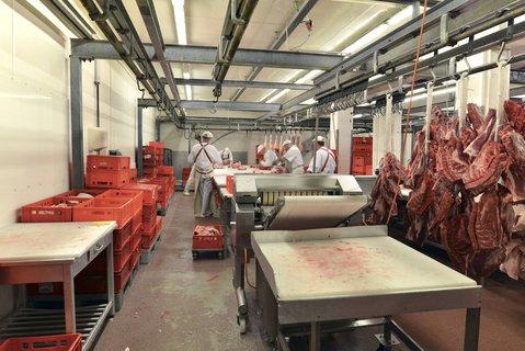 In einem Betrieb in Sachsen-Anhalt werden Schweine verarbeitet.