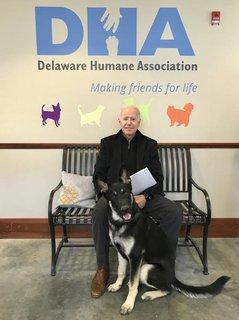 Verletzte sich beim Spielen mit dem Hund: Joe Biden.