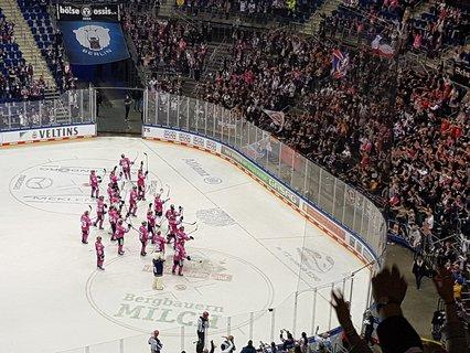 Die Eisbären feiern mit ihren Fans